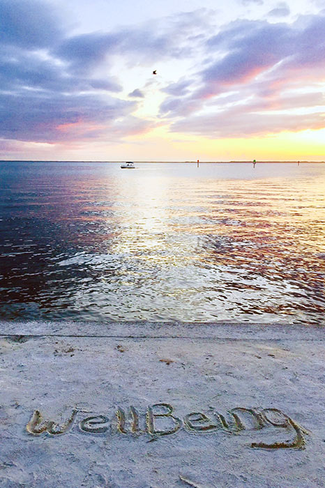 wellBeing in the sand, Sunset on Charlotte Harbor